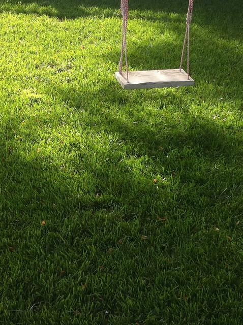 swing & grass