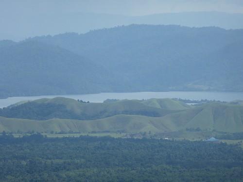 Papoua12-Sentani-Lac-Mc Arthur (7)1