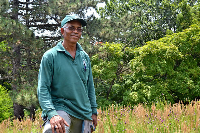 Barry Rogers is the curator of BBG's Lilac Collection, Overlook, and Visitor Center green roof.