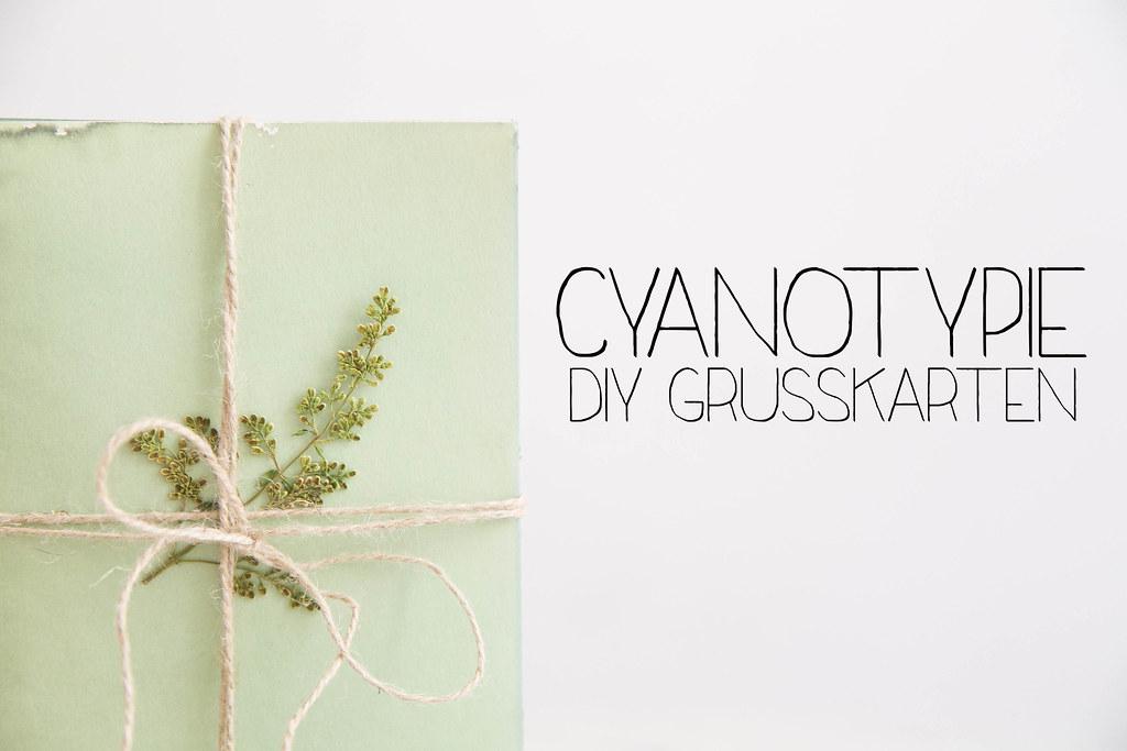 DIY-Cyanotypie-Grußkarten-9-Bearbeitet-Bearbeitet.jpg
