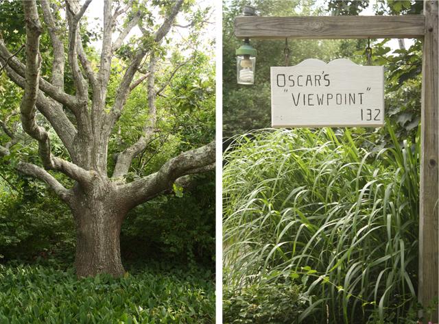 oscar's viewpoint