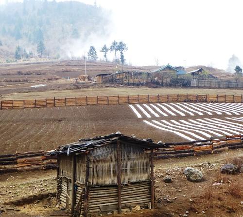 Yunnan13-Lijiang-Shangri La-Route (125)1
