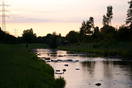 Late summer evening - Dreisam river VI