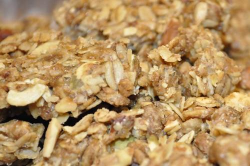 granola bar bits & bites 20