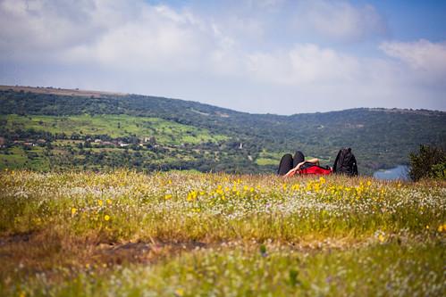 Road trip to Kaas — Plateau of flowers
