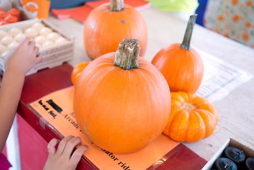 pumpkinpatch27