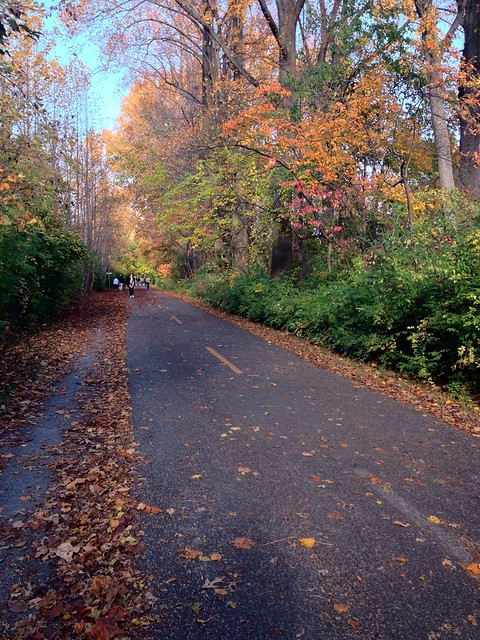 well-maintained section of Capitol Crescent Trail in MD