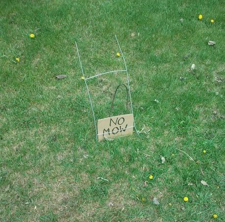 NO MOW! shouts the sign placed by a neighbour.