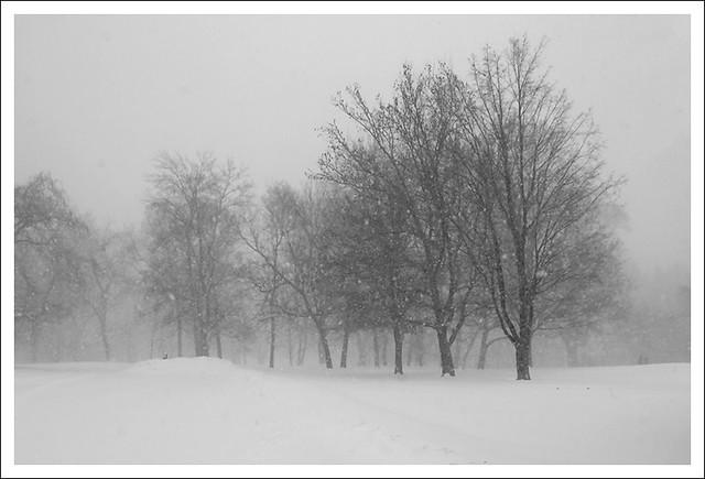 Big Snow 2014-01-05 6