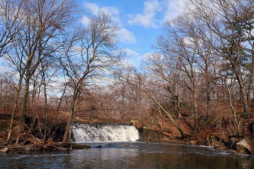 The Bronx River - January 15, 2014