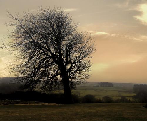 sunset twilight olympus countydurham princebishops olympus590spuz jimsumo jimsumo999 jimsum