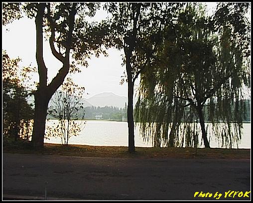 杭州 西湖 (其他景點) - 294 (在西湖十景之 蘇堤 看西裡湖日落 背景是西湖十景之 花港觀魚)
