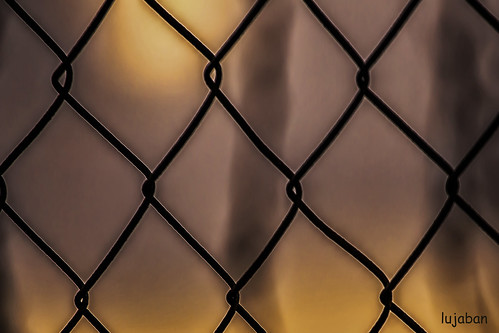 the fence by lujaban