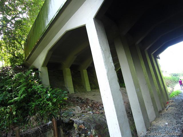 KTM Railway Track - Holland Road 1st Bridge 02