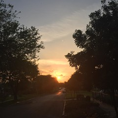 16 March 2017 #sunset #samespotforayear #nofilter #vso #vsocam #sunsetporn #cloudporn