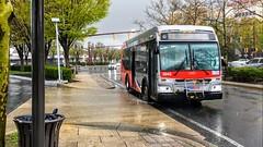 WMATA Metrobus 2012 Orion VII 3G Diesel #3043