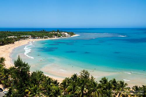 ocean blue beach azul flora nikon puertorico playa palmtree pr nikkor palma palmera atlanticocean luquillo playaazul d4 océano westindies océanoatlántico greaterantilles 2470mmf28g antillasmayores isladesanjuanbautista 2013032213137