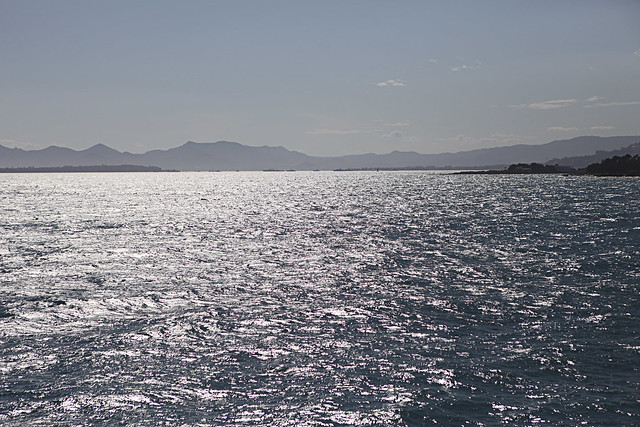 cannes0036