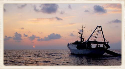 Lampedusa_001web