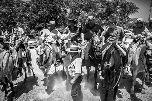 Saca de yeguas y caballos by Sansa - Factor Humano