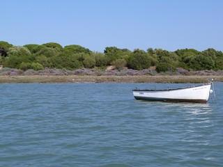 Parque de Los Toruños y Pinar de la Algaida (Puerto de Santa María)