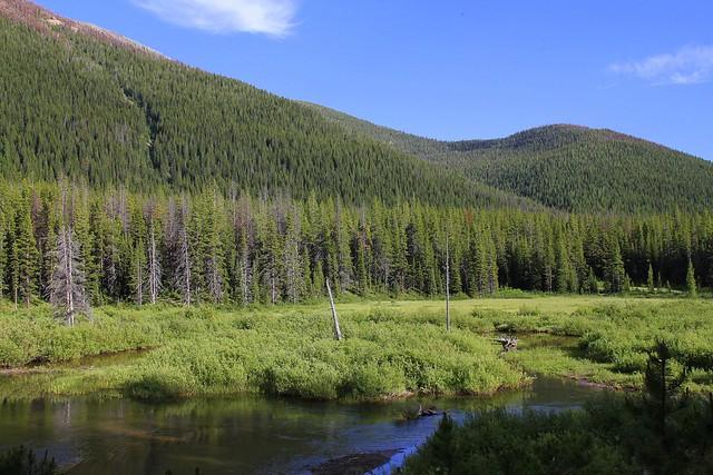 Meadow Creek Flickr Photo Sharing