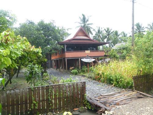 Sulawesi13-Sengkang-Pare Pare (10)
