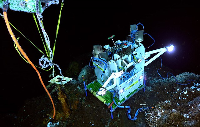 Tempo-Mini deployed near the base of Grotto vent edifice beneath our random access water sampler, RAS.
