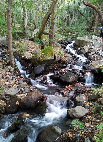 waterfall bulgaria waterfalls водопад камена belasitsa водопади яворница беласица камешнишки коларово скрът дъбицата дъбица мангъро яворнишки