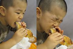 かたいパンをがんばってかじるとらちゃん 2013/8