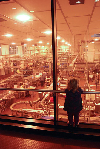 Factory Watching