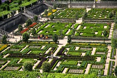 The vegetable gardens of Chateau de Villandry