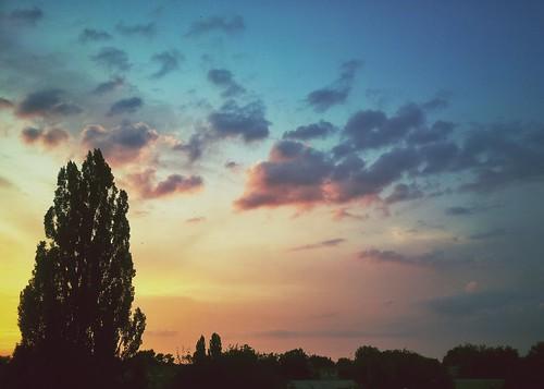 summer evening ukraine vinnitsa фрунзе зупинка flickrandroidapp:filter=none