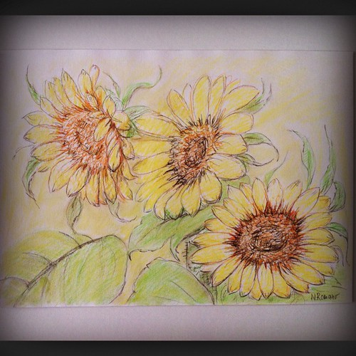 Sunflowers by Sparrow Little