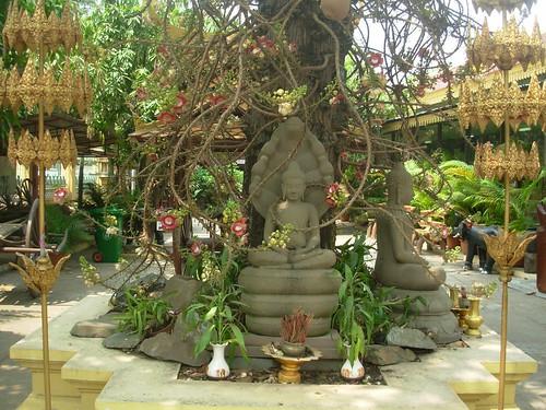 Phnom Penh-Wat Phnom (2)