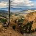 Yellowstone by Anfony79