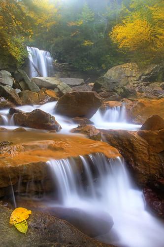 waterfall stream hiking canyon falls foliage wv westvirginia gorge blackwater appalachianmountains appalachians blackwaterriver douglasfalls