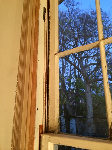 weatherstripping double hung windows counter weight its my hope that youll find this topic at least somewhat useful especially if youre installing your own spring bronze weather stripping installing spring bronze weather stripping for antique windows old