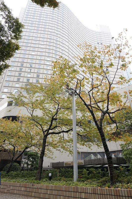 hilton Tokyo - shinjuku - hotel review (1)