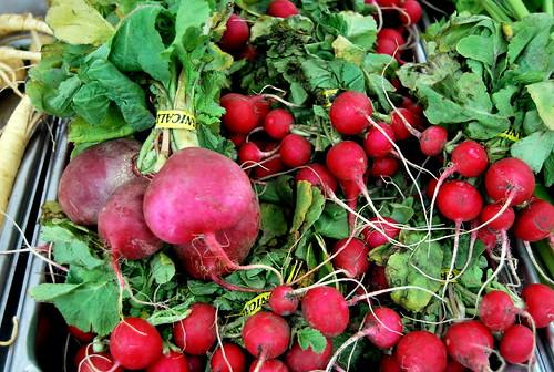 Farmer's Market radishes-001