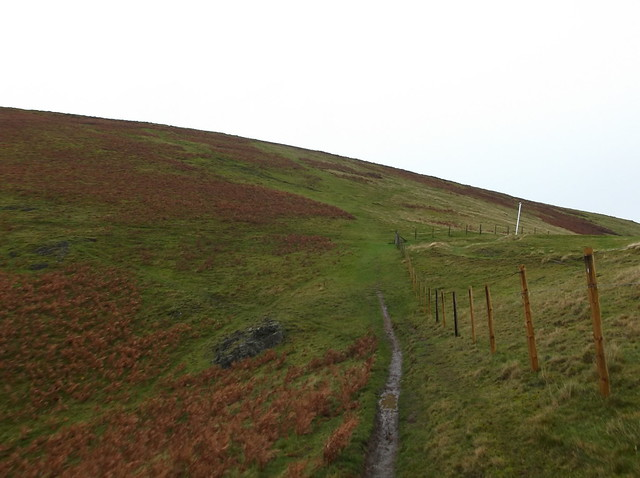 Pen y Fan and Pole Bank walk 224