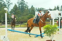 Concurso Semilleros Equitación 2013