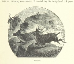 """British Library digitised image from page 95 of """"O'er Many Lands, On Many Seas"""""""