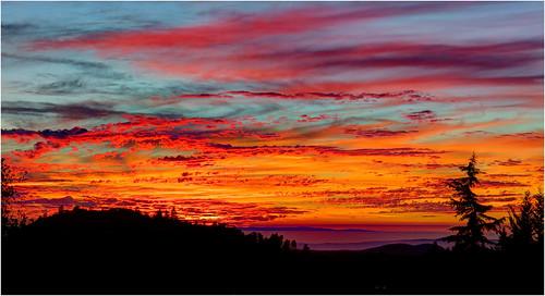 california sunset sonora sierrafoothills foothillsunset whentheskycaughtfire billbirthwistle