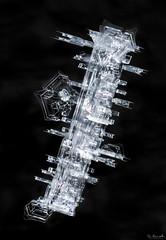 Snowflake: Beyond Imagination