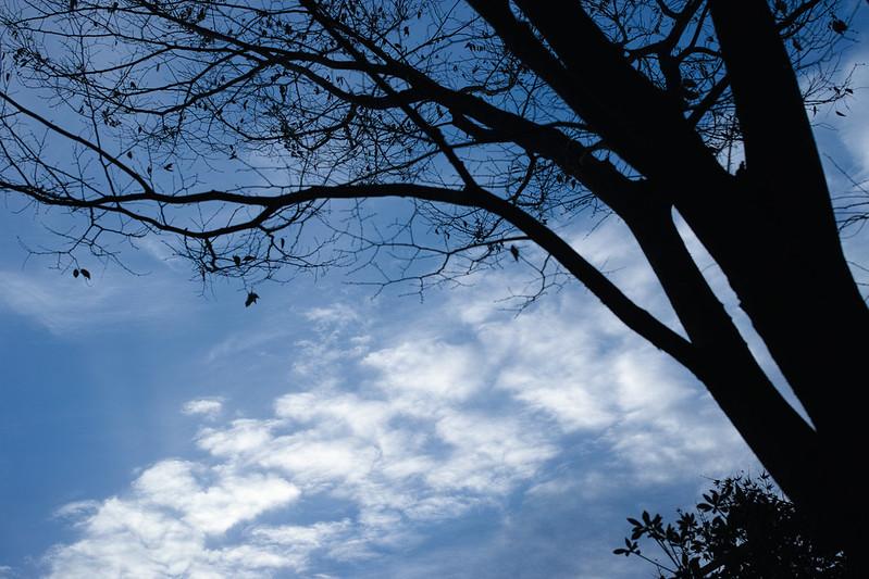 Blue sky & white clouds
