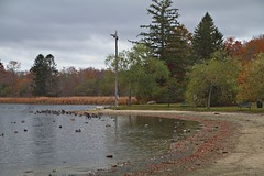 Buttonwood Park - New Bedford