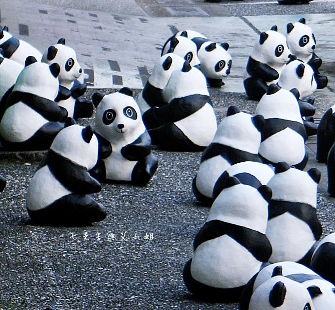 8 紙貓熊 1600貓熊之旅