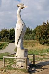 See(h)vogel an einem Aussichtspunkt  auf dem Weg nach Vitt (1)