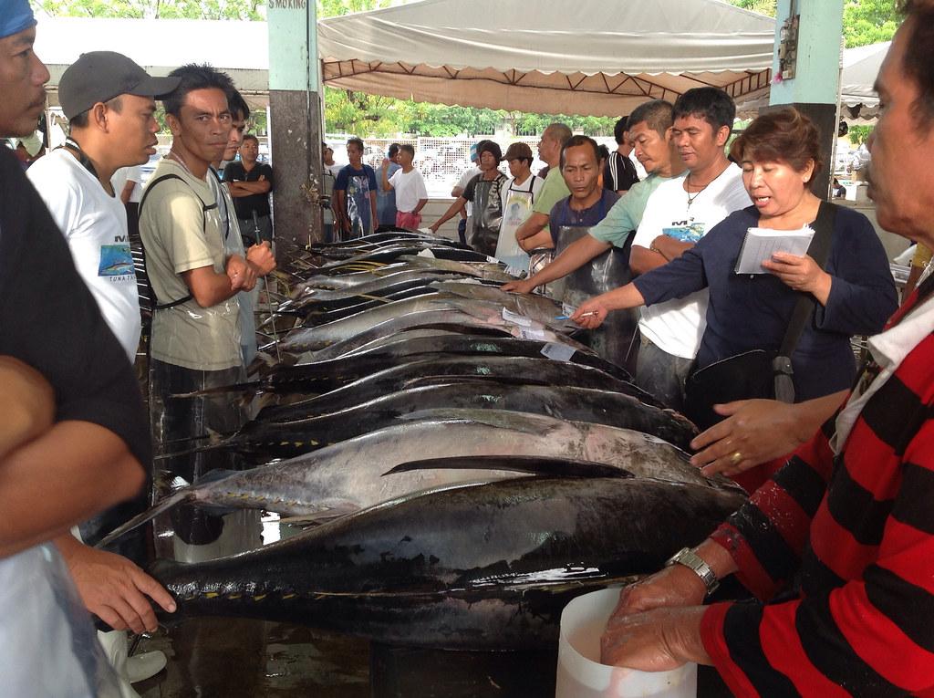 Tuna Trading